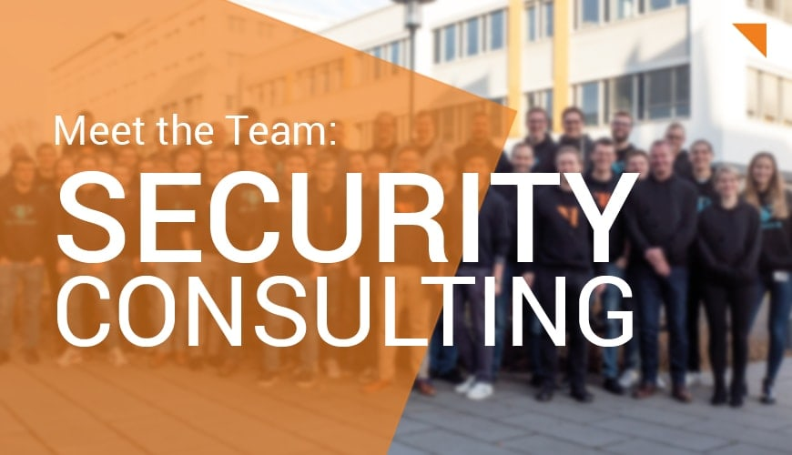 Meet the Team: Security Consulting