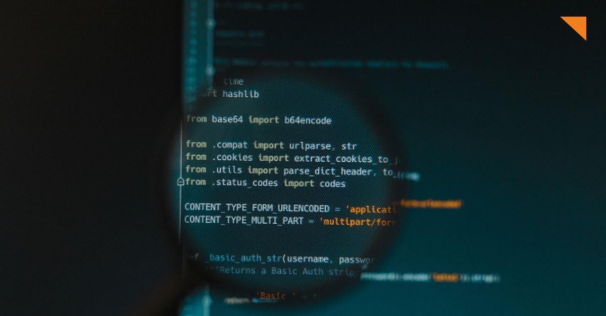Was ist, wenn sich das Einfallstor für Hacker im Quellcode verbirgt?